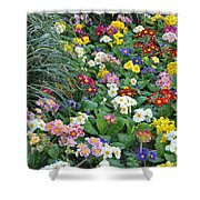 Floral Rainbow Shower Curtain