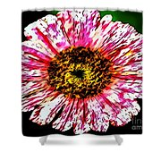 Floral Red And White Painting  Shower Curtain