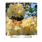 Floral Rhododendrons Fine Art Photography Art Prints Baslee Troutman Shower Curtain