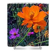 Floral Show Shower Curtain
