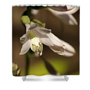 Floral Sideview Shower Curtain