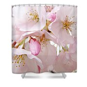 Floral Soft Pink Blossoms Spring Art Baslee Troutman Shower Curtain