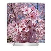 Floral Spring Art Pink Blossoms Canvas Baslee Troutman Shower Curtain