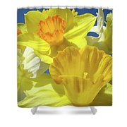 Floral Spring Garden Art Prints Yellow Daffodils Flowers Baslee Troutman Shower Curtain