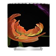 Floral Spring Tulips 2017 Abstract 01 Shower Curtain