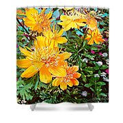 Floral Summer Shower Curtain