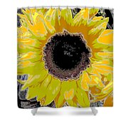 Floral Sunbeam Shower Curtain