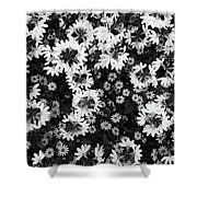 Floral Texture In Black And White Shower Curtain