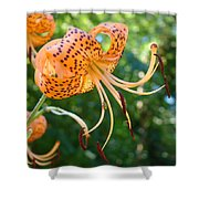Floral Tiger Lily Flower Art Print Orange Lilies Baslee Troutman Shower Curtain