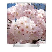 Floral Tree Blossoms Flowers Pink Art Baslee Troutman Shower Curtain