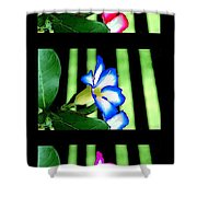 Floral Triptych Shower Curtain