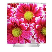 Floral Wallpaper Shower Curtain