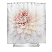 Floral Watercolor Background Shower Curtain