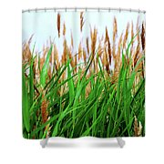 Floral2 Shower Curtain