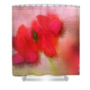 Florentina - J38 Shower Curtain