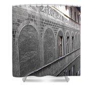 Florentine Stone Graffiti 2 Shower Curtain
