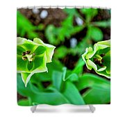 Florescent Green In Stereo Shower Curtain