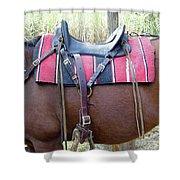 Florida Cracker Saddle Shower Curtain
