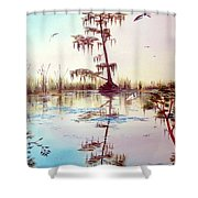 Florida Everglades Study # 1 Shower Curtain