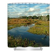 Florida Fall Shower Curtain
