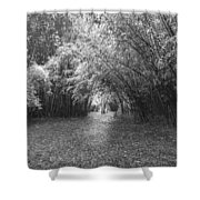 Florida Garden Scene_011 Shower Curtain