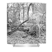 Florida Garden Scene_012 Shower Curtain