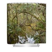 Florida Jungle Shower Curtain