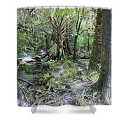 Florida Landscape - Lithia Springs Shower Curtain