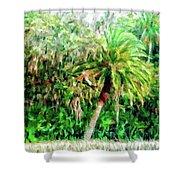 Florida Loop Shower Curtain