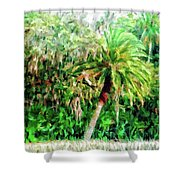 Florida Loop Shower Curtain
