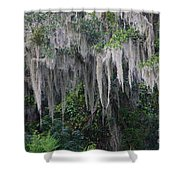 Florida Mossy Tree Shower Curtain