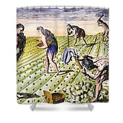 Florida Natives, 1591 Shower Curtain