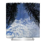 Florida Palm Fronds Blowing In The Breeze Shower Curtain