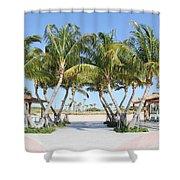 Florida Palms At Beach Shower Curtain