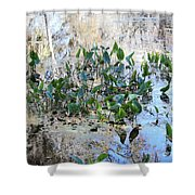 Florida Pond Shower Curtain