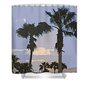 Florida Queen Palm Trees   Shower Curtain