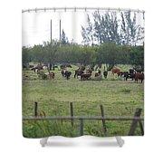 Florida Ranch Shower Curtain