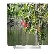 Florida Reflections Shower Curtain