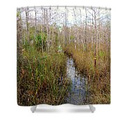 Florida Trail Big Cypress Shower Curtain