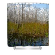 Florida Wilderness Shower Curtain
