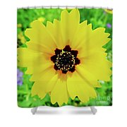 Florida - Yellow - Wildflower Shower Curtain