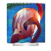 Florida's Flamingo's Shower Curtain