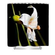 Floss Silk Bloom Shower Curtain