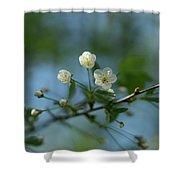 Flower # 056 Shower Curtain