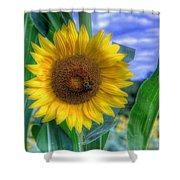 Flower # 37 Shower Curtain