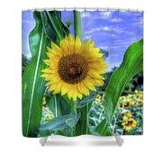 Flower # 38 Shower Curtain
