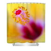 Flower - Stamen 2 Shower Curtain