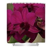 Flower 127 Shower Curtain