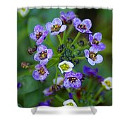 Flower 2 Shower Curtain