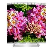 Flower 23f, Ny, 16 Shower Curtain